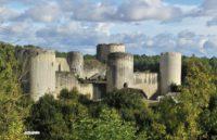 Association des Amis du château de Coudray-Salbart